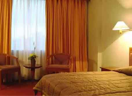 Emerald Gardenia Hotel - Medan, Superior / Executive Deluxe Room