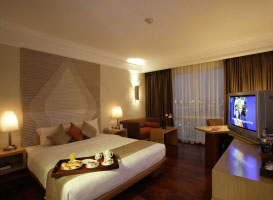Novotel Hotel - Semarang, Executive Room