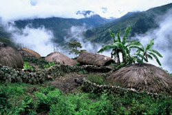 Indonesia Travel - PAPUA ADVENTURE see Baliem Valley trek